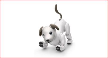 ソニーのアイボとリアルな犬を飼うのはどっちがお金がかからないの?